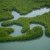 Environnement – Deux intéressants articles du Monde sur les zones humides
