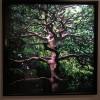 Exposition «Nous les arbres», Fondation Cartier pour l'art contemporain – Déçu !