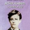 Arthur Rimbaud, le voleur de feu, Sarah Cohen-Scali, Le Livre de Poche – Intéressante biographie romancée