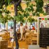 Café Ha(a)ïtza à la Test-de-Buch