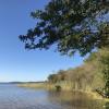 Balade matinale à vélo : les plages, la forêt, l'étang de Cazaux